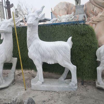 汉白玉石雕羊